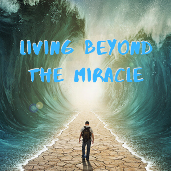 Living Beyond the Miracle