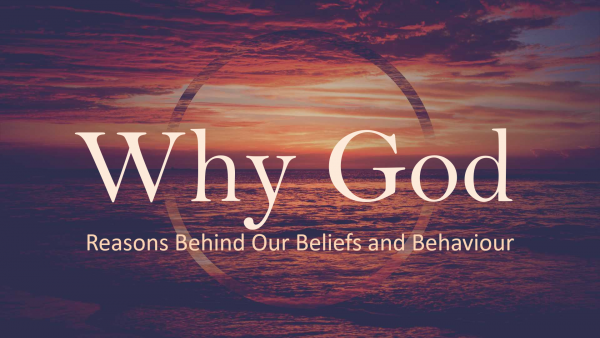 why-god-reasons-behind-our-beliefs-and-behaviourWhy God: Reasons Behind our Beliefs and Behaviour