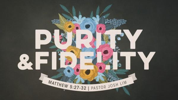purity-and-fidelityPurity and Fidelity