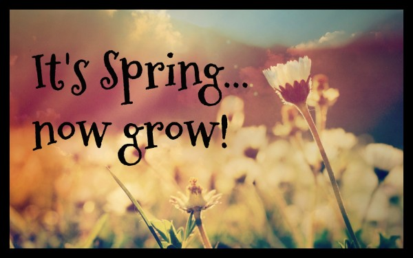 It's Spring,.. now grow! - May 7th, 2017