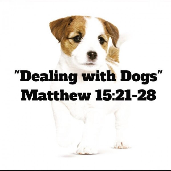 dealing-with-dogsDealing with Dogs