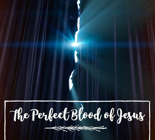The perfect blood of Jesus-Jan 14th, 2018
