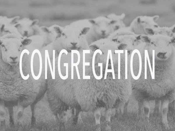 the-congregationThe Congregation