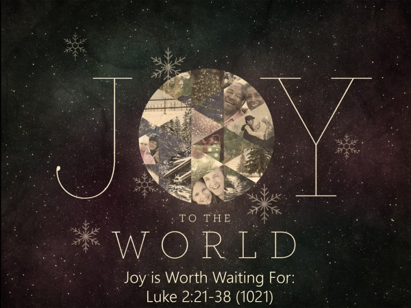 joy-is-worth-waiting-forJoy is Worth Waiting For