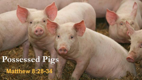 Possessed Pigs