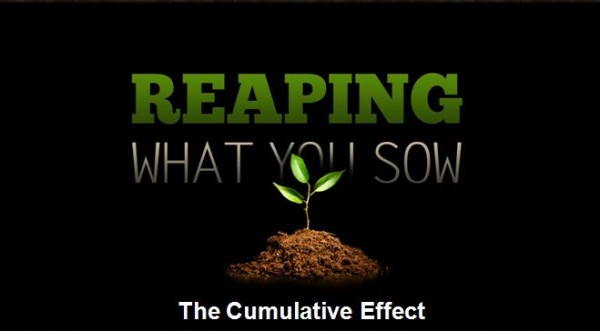 reaping-what-you-sowReaping What You Sow