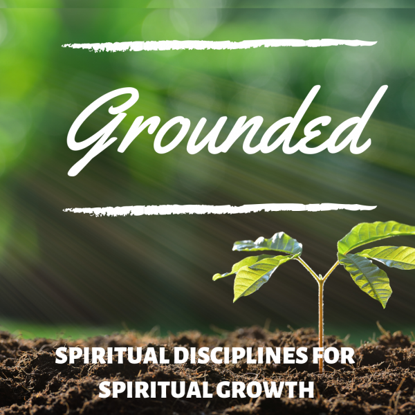 planted-in-the-wordPlanted in the Word
