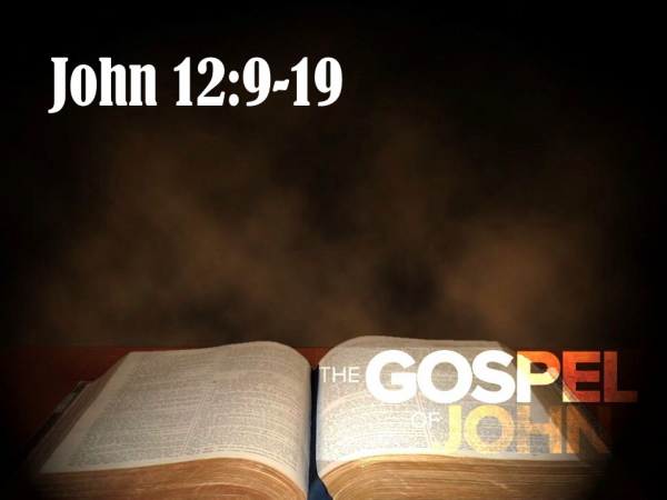 Sunday 05-12-2019