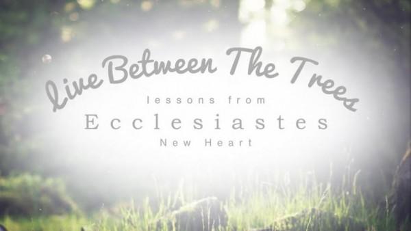 """""""Enjoy The Ride"""" Ecclesiastes 3:1-13"""