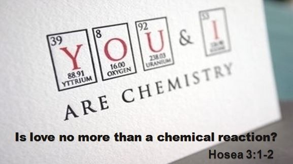chemistry-is-love-no-more-than-a-chemical-reactionChemistry: Is love no more than a chemical reaction?