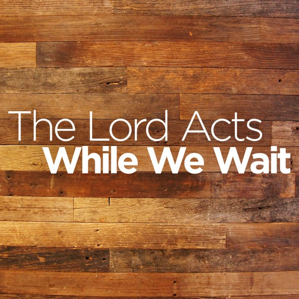 the-lord-acts-while-we-waitThe Lord Acts While We Wait
