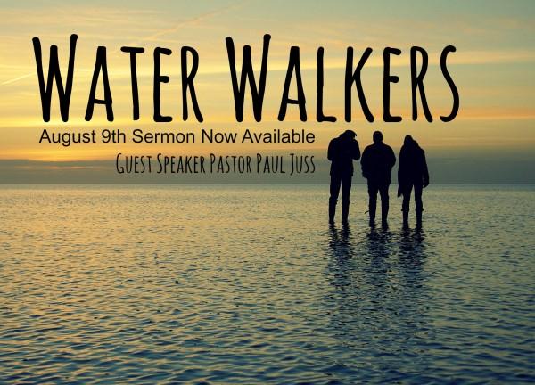 water-walkers-august-9th-2015Water Walkers -August 9th , 2015