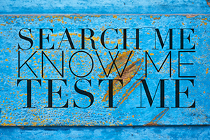 search-me-know-me-test-me