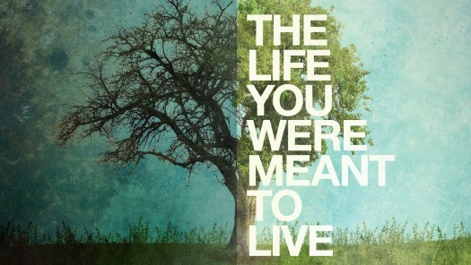 the-life-you-were-meant-to-liveThe Life You Were Meant to Live