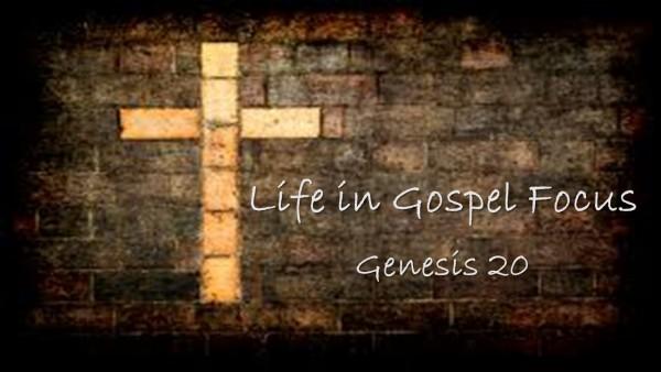 Life in Gospel Focus