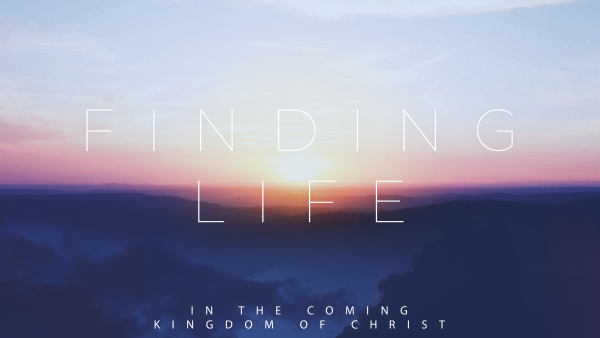 finding-lifeFinding Life