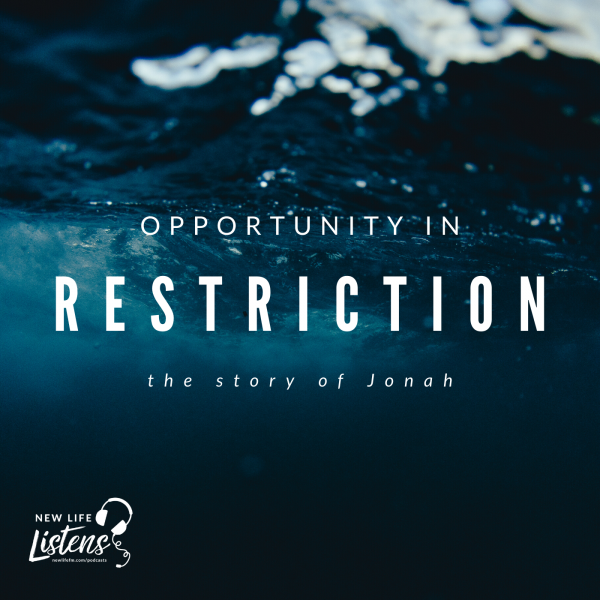 opportunity-in-restrictionOpportunity in Restriction