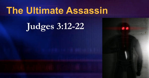 the-ultimate-assassinThe Ultimate Assassin
