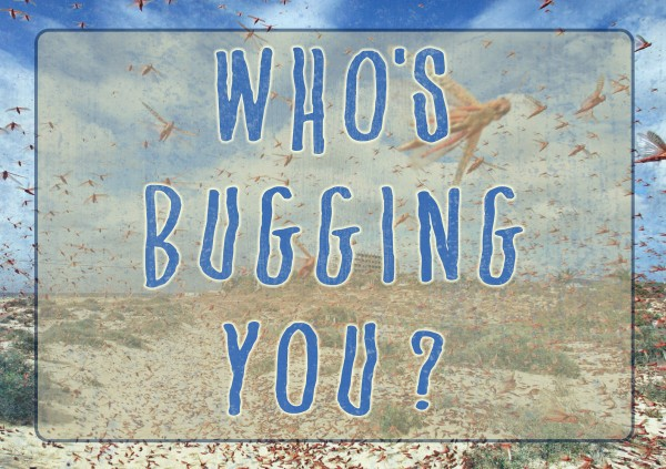whos-bugging-you-pastor-kenny-smithWho's Bugging You? (Pastor Kenny Smith)