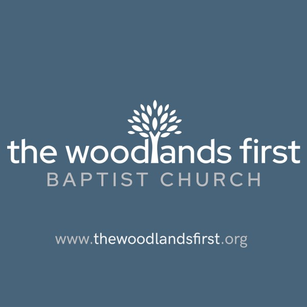 The-Woodlands-FirstThe Woodlands First