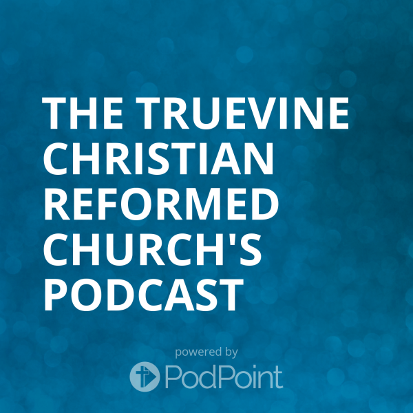 the-truevine-christian-reformed-church-podcastThe TrueVine Christian Reformed Church's SermonCast