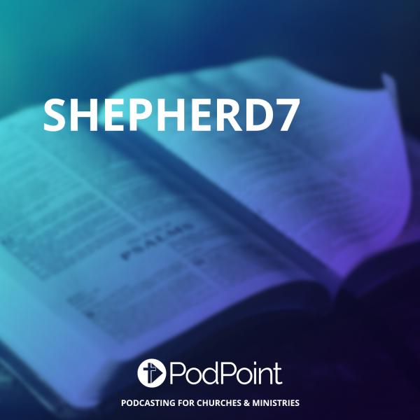 shepherd7