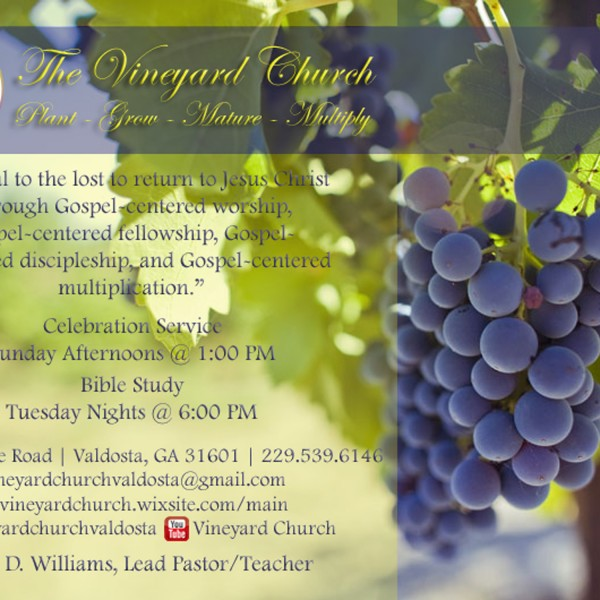The Vineyard Church of Valdosta