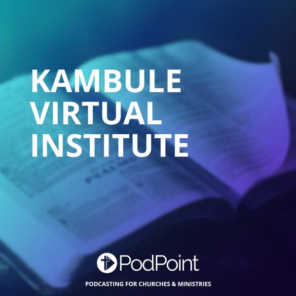 Kambule Virtual institute