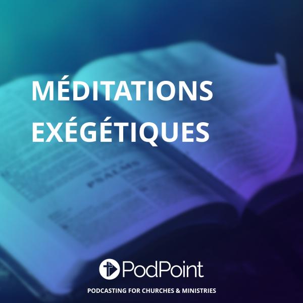 Méditations exégétiques